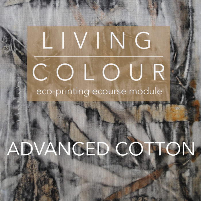 Advanced Cotton eco-printing ecourse module