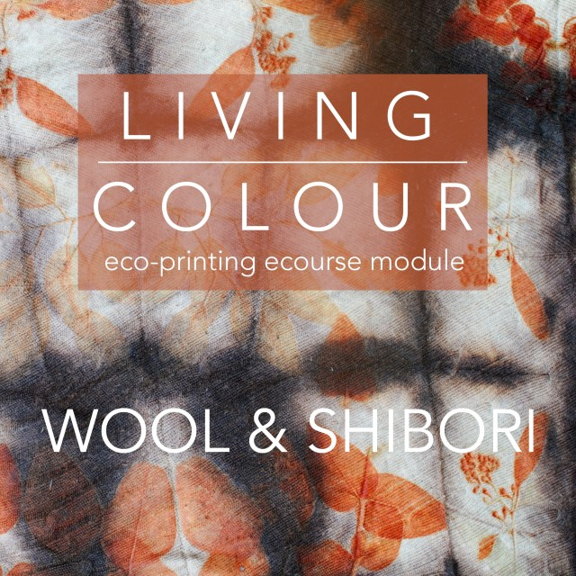 """""""Living Colour eco-printing ecourse module: Wool and Shibori"""" written over wool with bright orange eco-prints"""