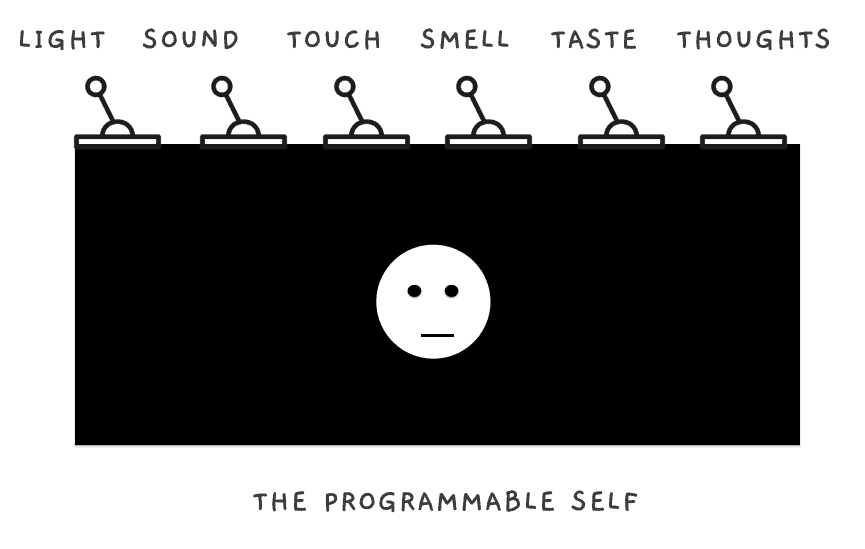 The Present is Programmable: A box controlling our Sight, Sound, Touch, Smell, Tase and Thought