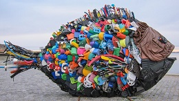 environmental effect of plastics