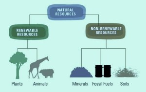 natural resources and its types