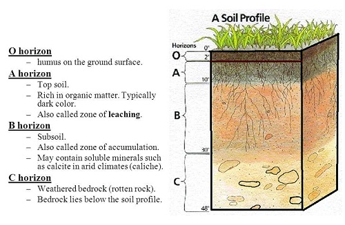 soil profile explanation with diagram