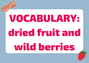 dried fruits wild berries
