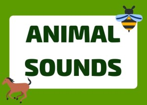 Italian animals and sounds