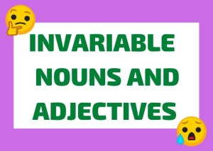 Italian invariable nouns and adjectives