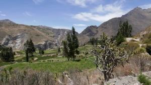 paysage depuis Madrigal
