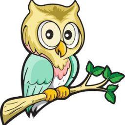 Owl+of+Athena+by+David+Millington
