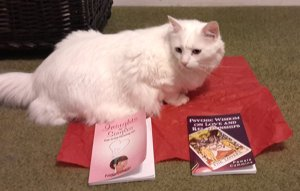 Merlin with Pamela's Love Books
