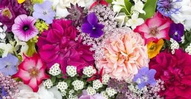Lesson 30 - Flowers