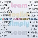 Vocabulary Part 40 f