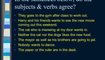 In the sentences below, do the subjects & verbs agree?