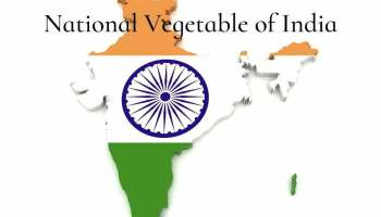 National Vegetable of India