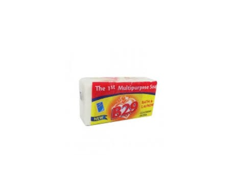 b29-multi-purpose-soap
