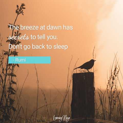 """""""The breeze at dawn has secrets to tell you. Don't go back to sleep."""" – Rumi"""