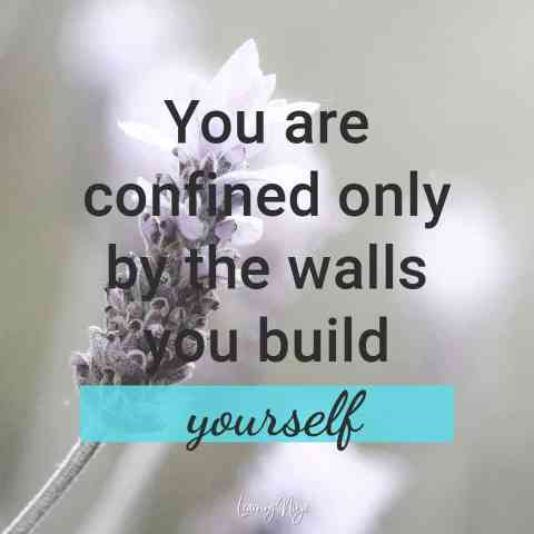 Ninja Mindset Quotes: You are confined only by the walls you build yourself