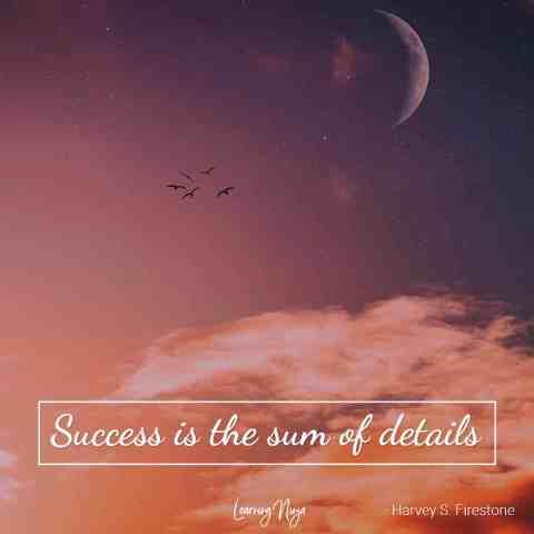 Mindset Ninja Quotes: Success is the sum of details - Harvey S. Firestone