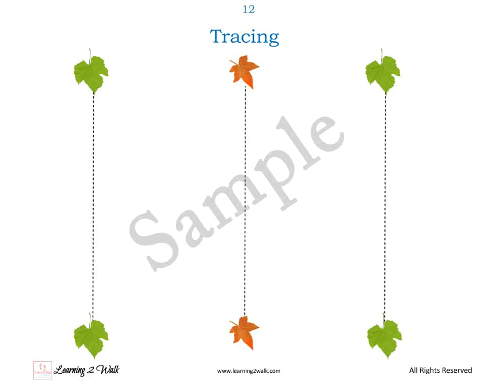Free Fall Leaf Preschool Printable Worksheets