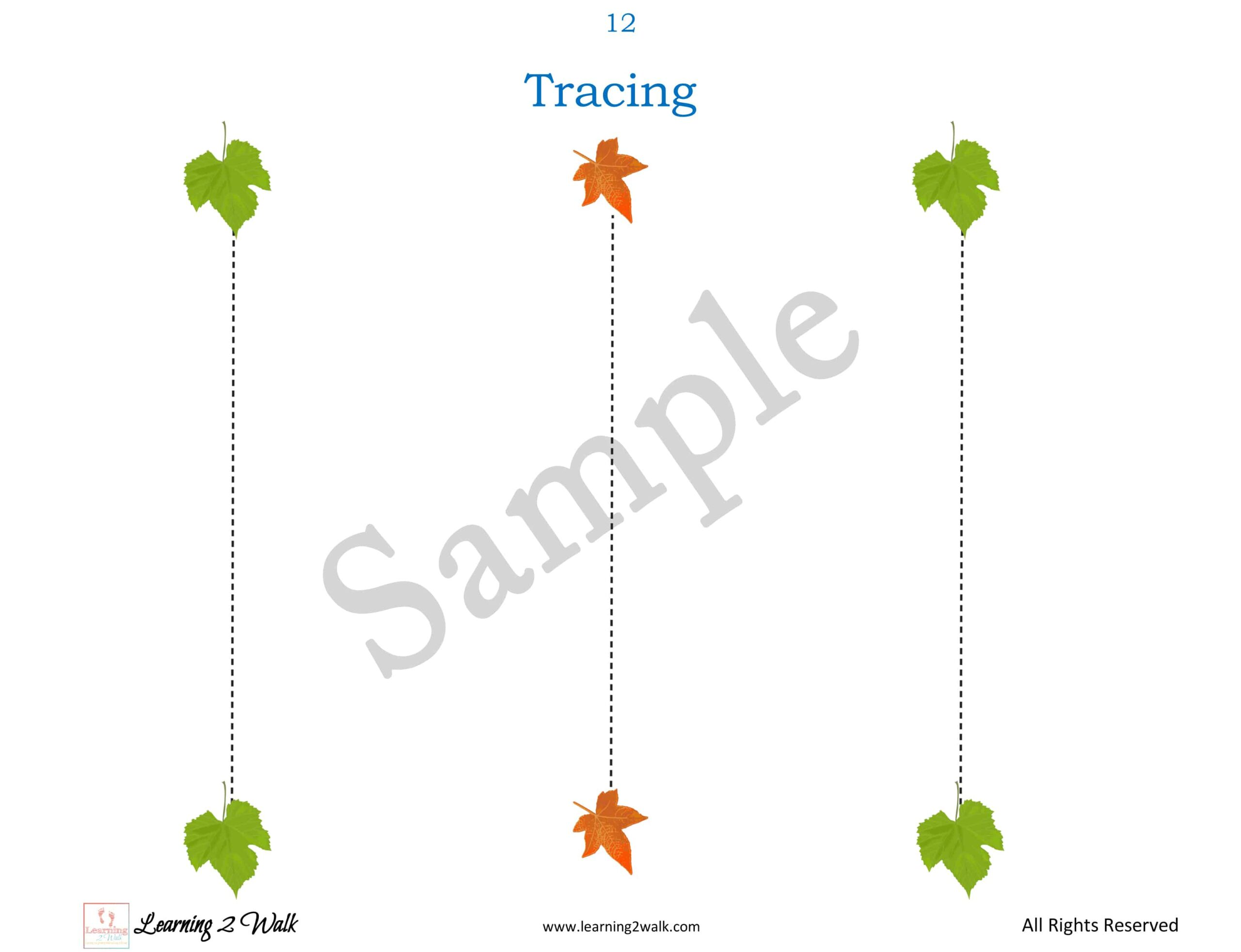 Leaf Themed Preschool Tracing Sample