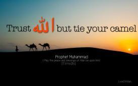 Hadith: Tie your camel