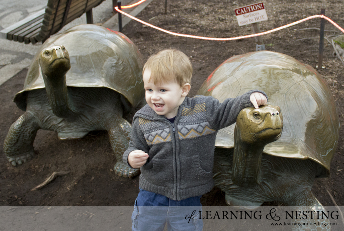 7 Places to Visit in (and around) Southern Michigan - Toledo Zoo (Ohio) | of Learning and Nesting