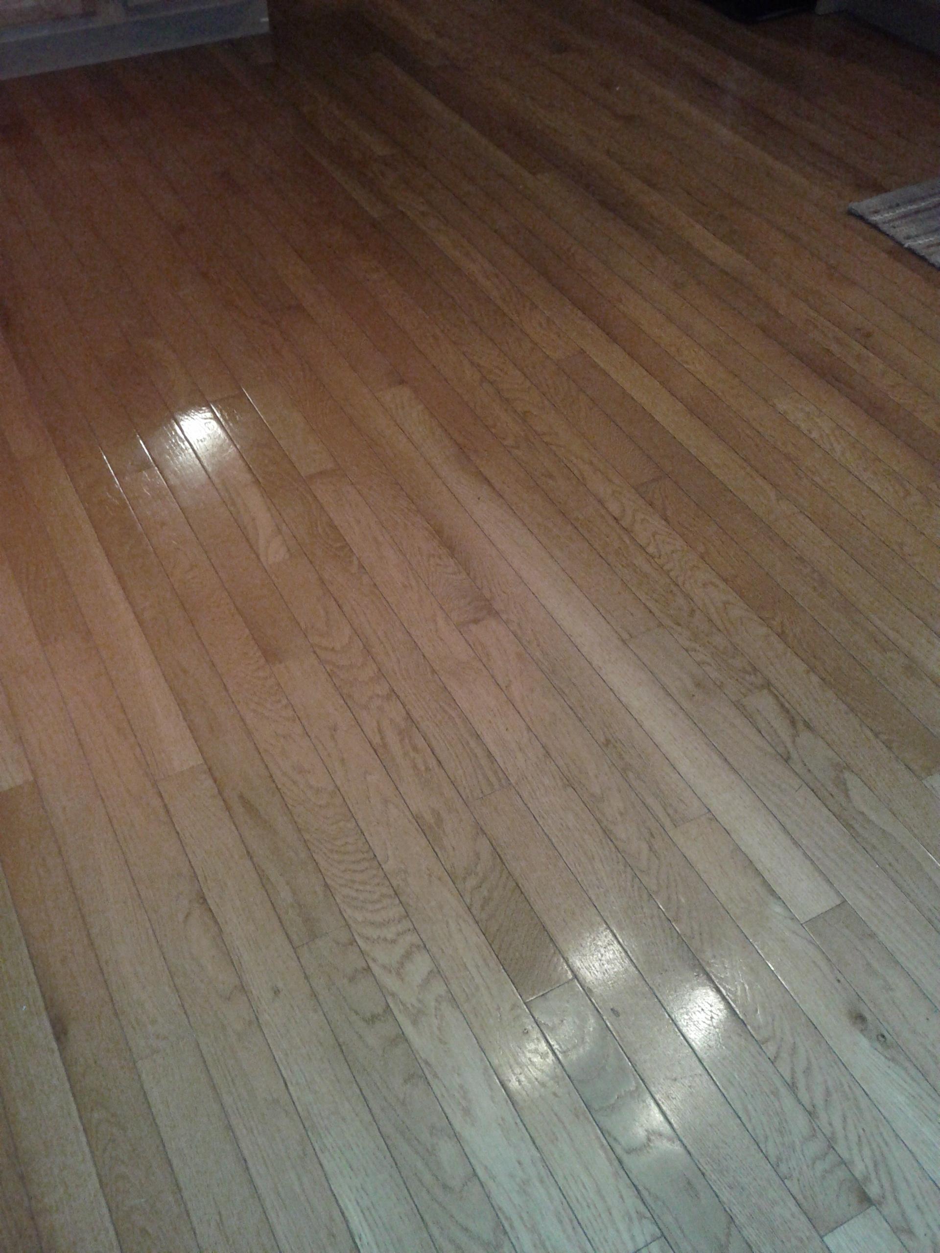 The Best Homemade Floor Cleaner Ever  Learning As I Go