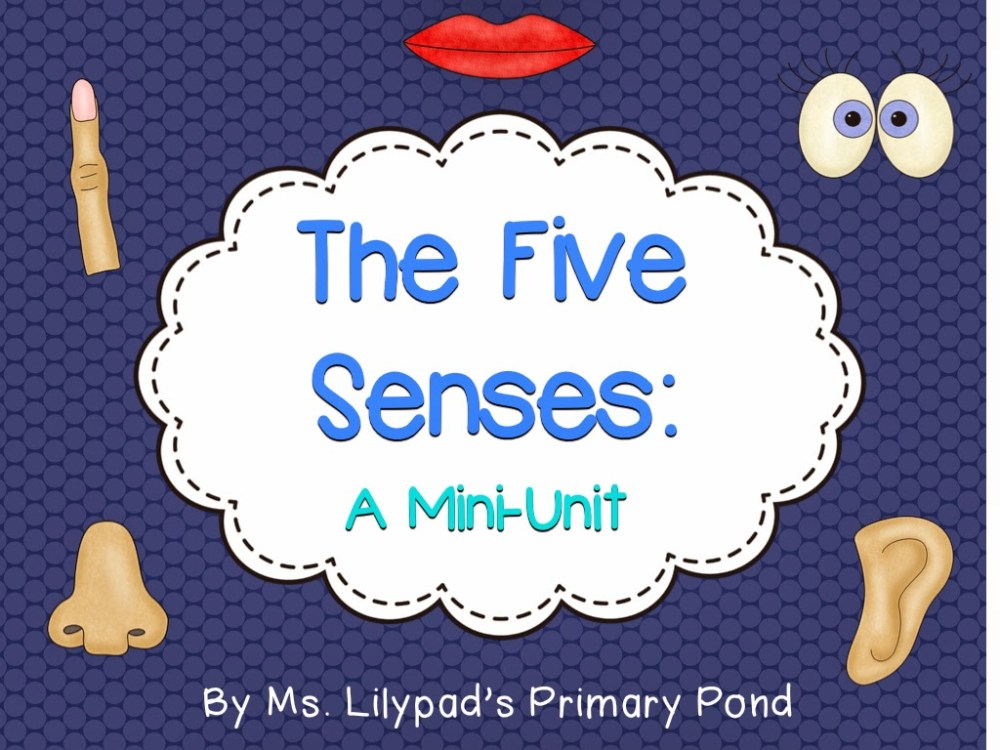 medium resolution of Five Senses Unit: A smelly good time! - Learning at the Primary Pond
