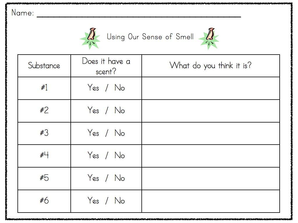 Five Senses Unit A Smelly Good Time