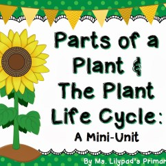 Sunflower Plant Life Cycle Diagram Taser Circuit Parts Of A And The Learning At