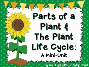 Parts of a Plant & The Plant Life Cycle  Learning at the
