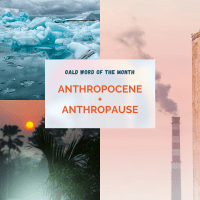 Anthropocene and Anthropause - Why these words matter