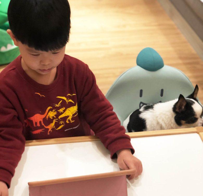 查理與吉娃娃哥哥「胖虎」一起上課