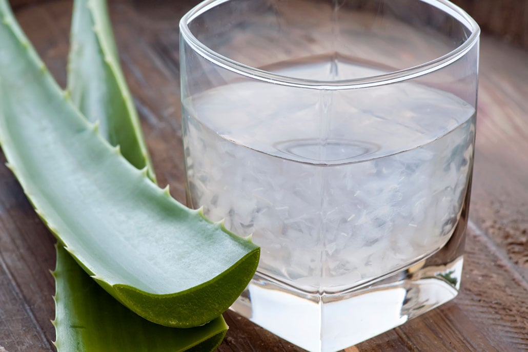 How to Harvest and Freeze Aloe Vera Gel