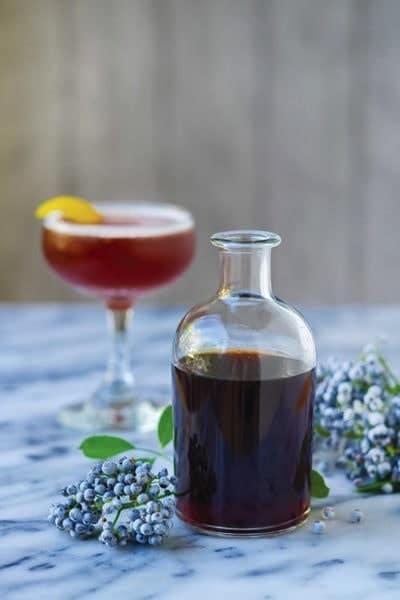 Elderberry Elixir Sidecar