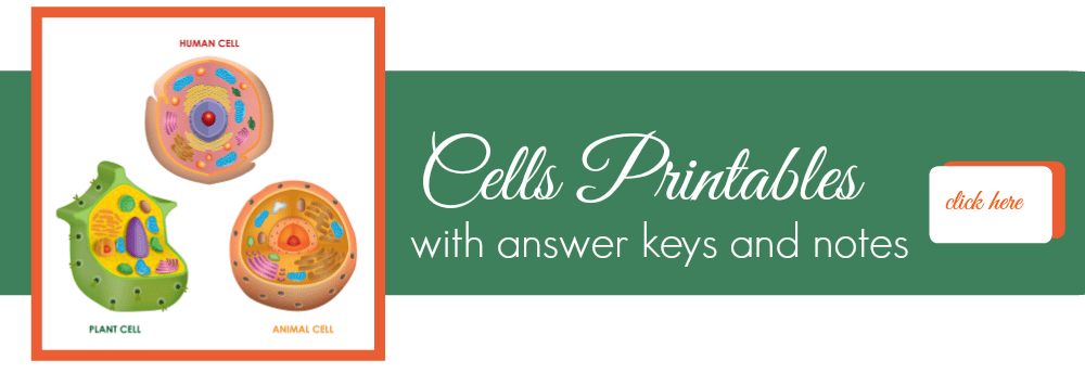 Cells Printables