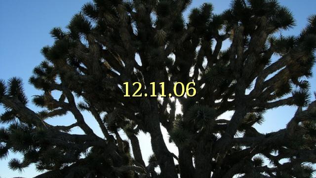 12.11.06