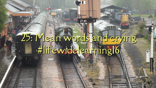 25: Mean words and crying #lifewidelearning16