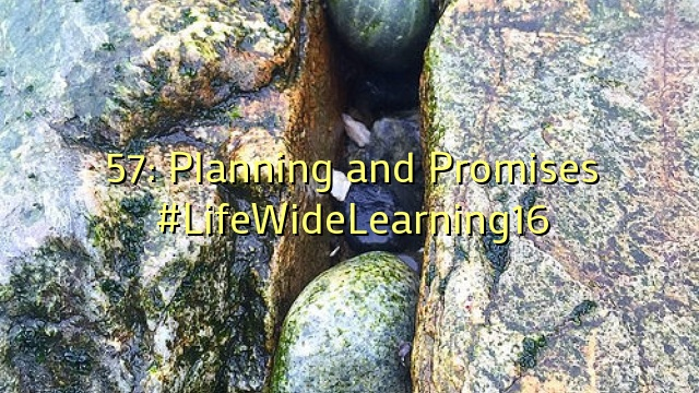 57: Planning and Promises #LifeWideLearning16