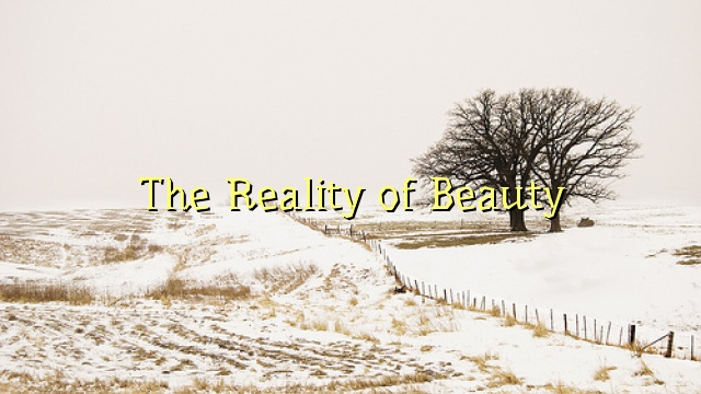 The Reality of Beauty