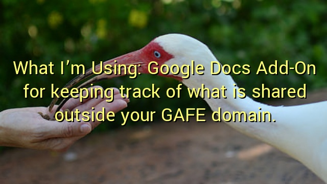 What I'm Using: Google Docs Add-On for keeping track of what is shared outside your GAFE domain.