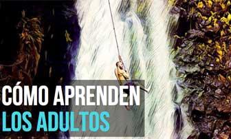 El aprendizaje en el adulto
