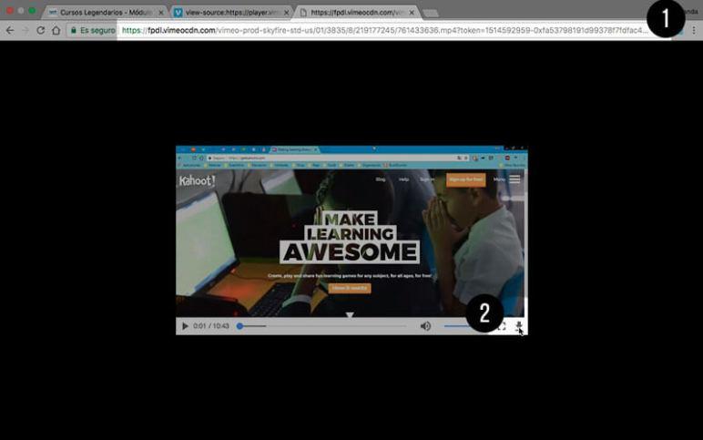 programa para descargar videos de vimeo online