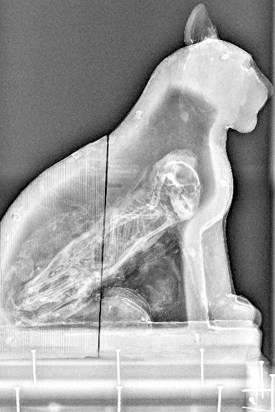 X-Ray of Cat Mummy, Manchester Museum, The University of Manchester © Alan Seabright