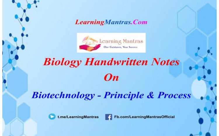 Biotechnology – Principle and Process Notes PDF for Class 12, NEET & Medical Exam