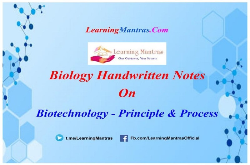 Biotechnology Principle and Process Notes PDF