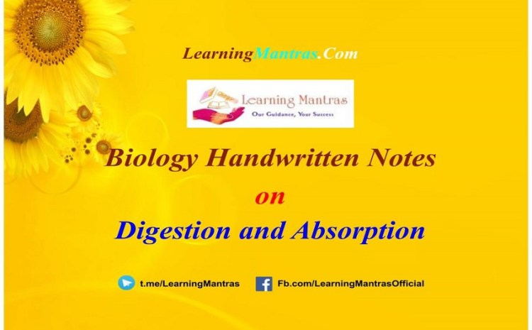 Digestion and Absorption Handwritten Notes PDF for Class 12, NEET, AIIMS and Medical Exams