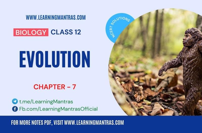NCERT Solutions for Evolution