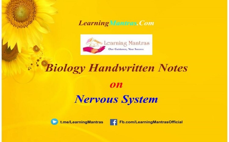 Nervous System Handwritten Notes PDF for Class 12, NEET, AIIMS and Medical Exams