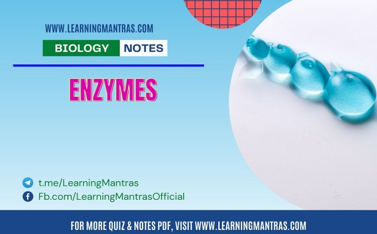 Biology MCQ on Enzyme for NEET and Medical Exam 2021