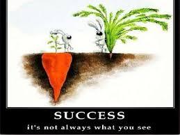 carrot-success