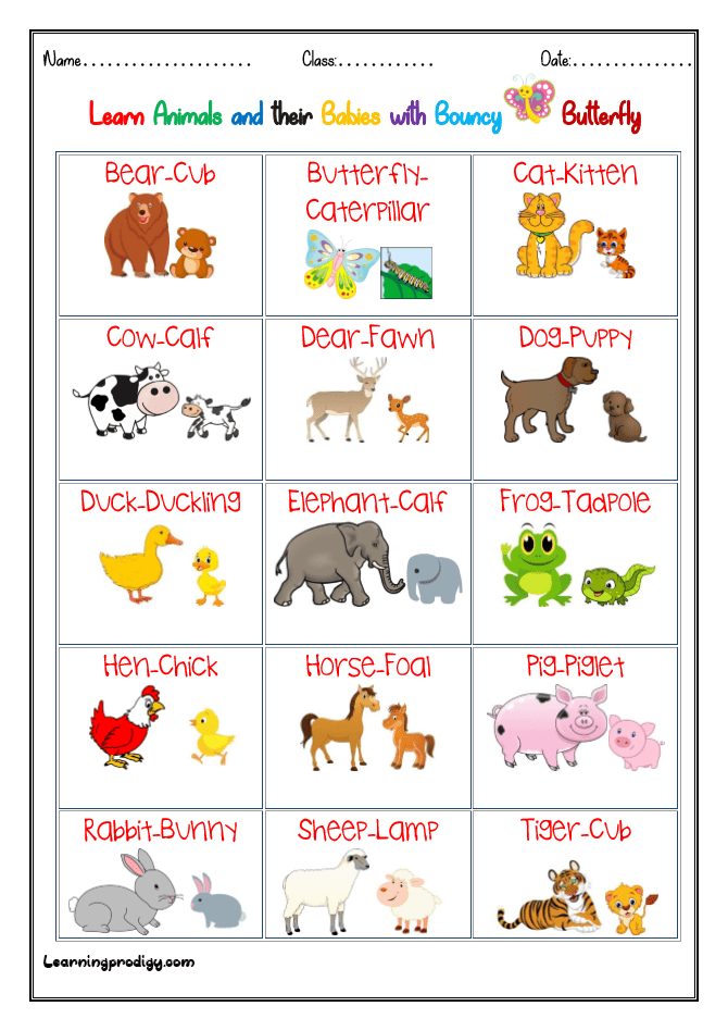 Animals and Babies| Young Ones Chart with Pictures | LearningProdigy |  Charts |